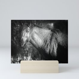 Garcia No. 2-Pryor Mustangs bw Mini Art Print