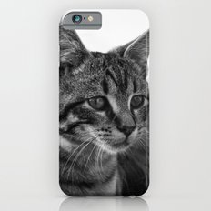 Windows To the Soul iPhone 6s Slim Case