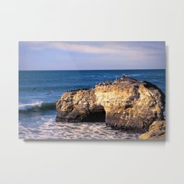 Natural Bridges, Santa Cruz Metal Print