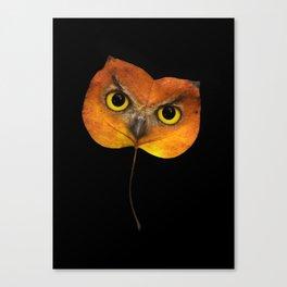 Autumn Owl-2 Canvas Print