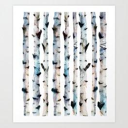 New Birch Trees Forest Art Print
