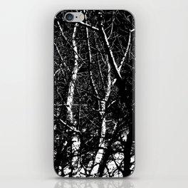 Bare Winter Trees iPhone Skin
