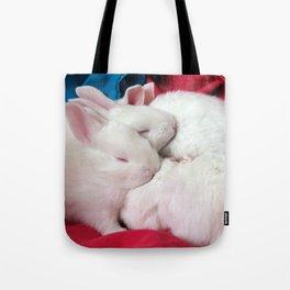 kits_28x28_1 Tote Bag