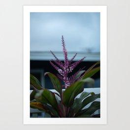 Moody Bloom Art Print