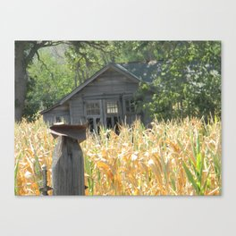 Waiting for Harvest Canvas Print