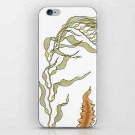 Seaweeds iPhone Skin
