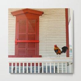 Key West Rooster Metal Print