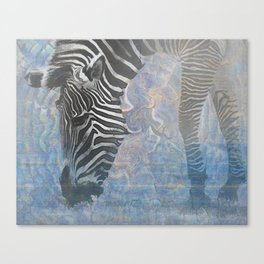 Zebra in the Mist Canvas Print