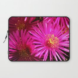 Ice Plant Pink Cactus Flowers Laptop Sleeve
