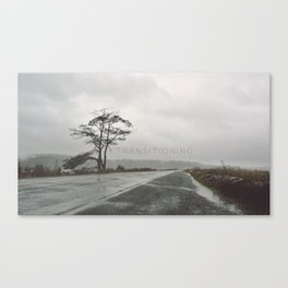 Transitioning Canvas Print
