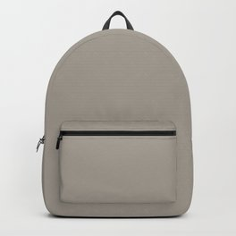 Fossil Gray Solid Color Pairs with Sherwin Williams Haven 2020 Forecast Color Functional Gray SW7024 Backpack