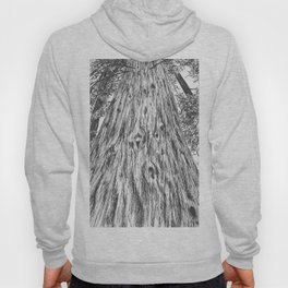 The Mighty Redwood Hoody