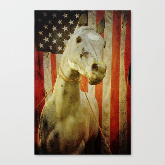 Portrait of an American Horse Canvas Print