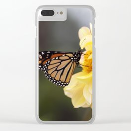 Longwood Gardens Autumn Series 405 Clear iPhone Case