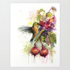 Hummingbird and Fuchsia Watercolor Art Print