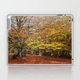 Colorful autumnal forest Laptop & iPad Skin