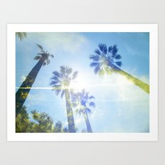 Faded Palms Art Print