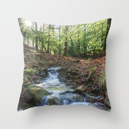 Early Spring Sunrise Throw Pillow
