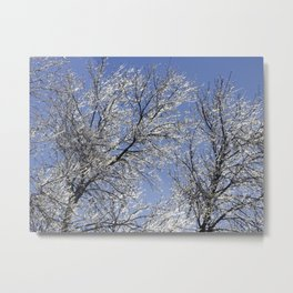Sparkling Iced Branches Metal Print