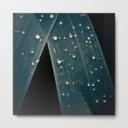 Diamonds & Pearls Metal Print