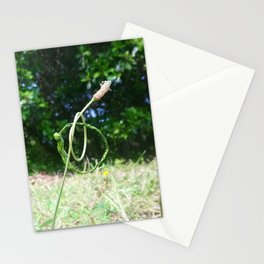 Knotted grasses Stationery Cards