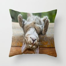 sleepy cat Throw Pillow