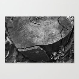 Love in Nature Canvas Print