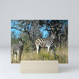 Two Zebras Bush Savana Portrait Mini Art Print