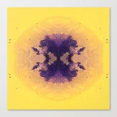 Mitosis 1 Canvas Print