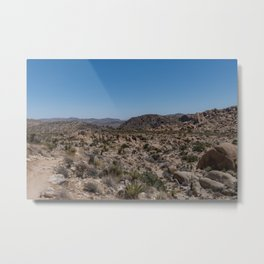 Scenic Joshua Tree National Park vista Metal Print
