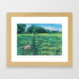 Walkies in the meadow Framed Art Print