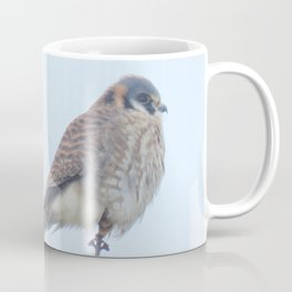 Female Kestrel (Sparrowhawk) 15 Coffee Mug