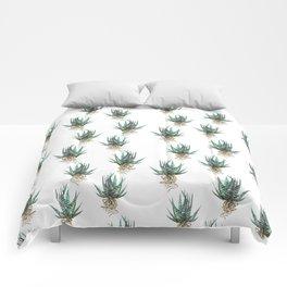 Haworthia Comforters