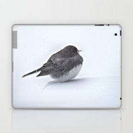 Brave Bird in a Blizzard Laptop & iPad Skin