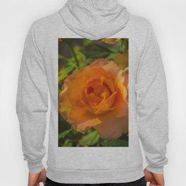 Rose 2 Hoody