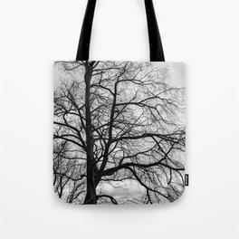 Black white tree Tote Bag
