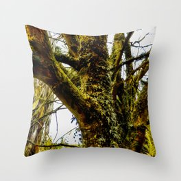 The Tree by the River Throw Pillow