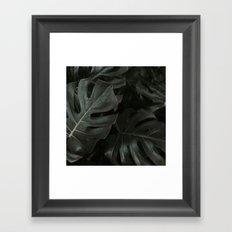 Monstera Fade Framed Art Print