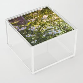 Continuous Matters Acrylic Box