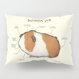 Anatomy of a Guinea Pig Pillow Sham