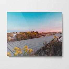 Beach Walkway III Metal Print