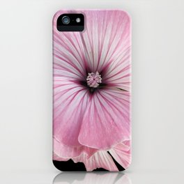 hollyhock #society6 #decor #buyart iPhone Case