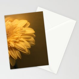 Pale Stationery Cards