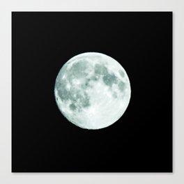 just moon Canvas Print