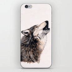 Grey wolf iPhone & iPod Skin