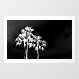 Palm Tree Noir #6 Art Print