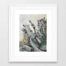 Prickly Pear Cactus Framed Art Print