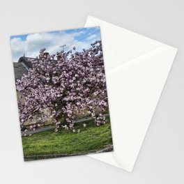 Ashby St Ledgers thatched cottages Stationery Cards