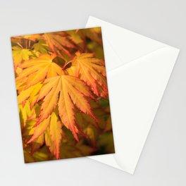 Orange Dream Stationery Cards