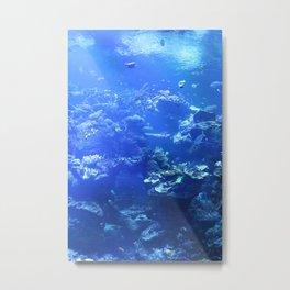 Tropical Aquarium Metal Print